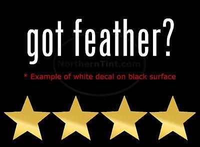 got feather? Vinyl wall art truck car decal sticker