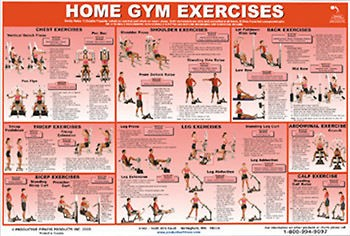 York 401 Multi Gym Exercise Routines Pictures