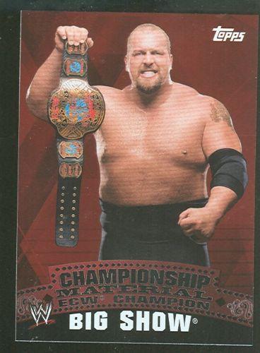 Topps WWE Big Show Championship Belt Puzzle Piece Aiken