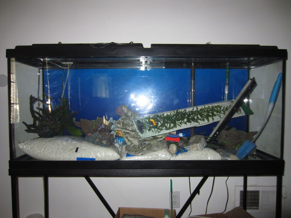 55 gallon long aquarium fish tank complete w iron stand for 55 gallon fish tank stand
