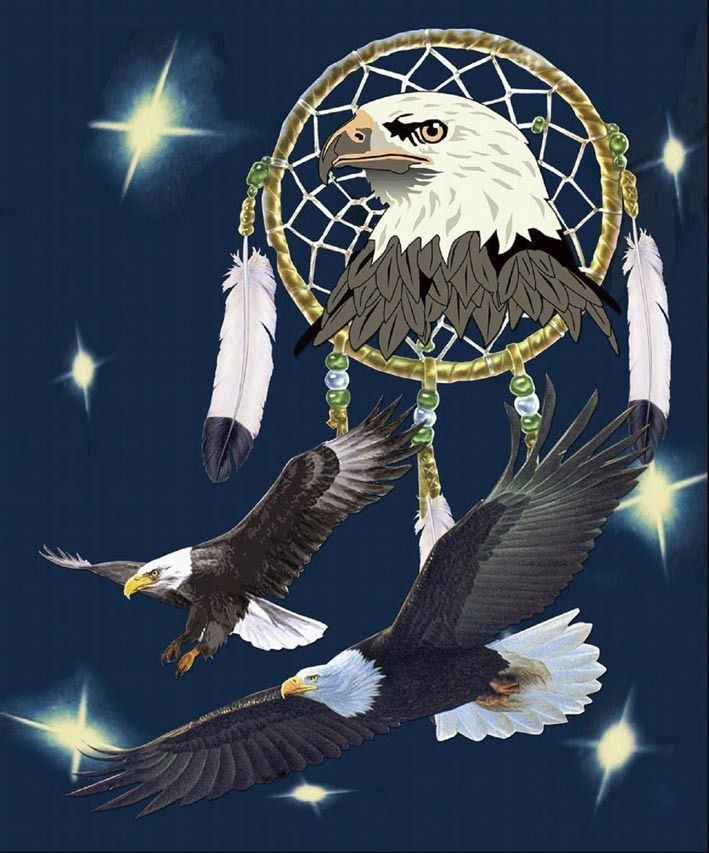 Eagle With Dream Catcher Super Plush Mink Style Queen Size Soft Warm